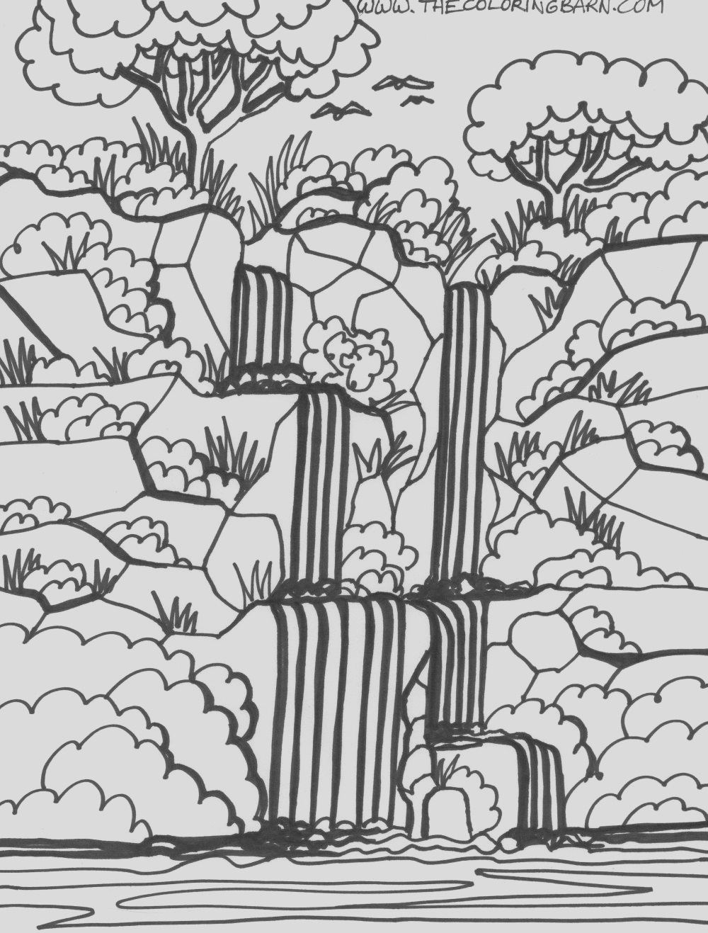 tropical rainforests coloring pages