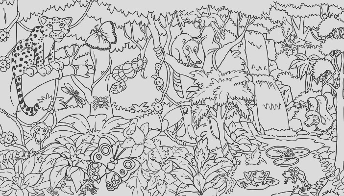 rainforest coloring pages endangered species coloring pages for free 1 3