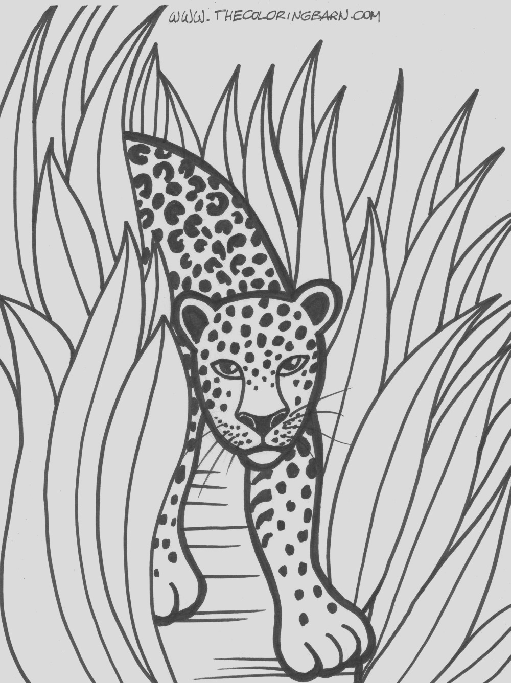 rain forest trees coloring page