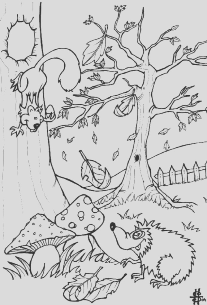 rainforest coloring pages endangered species coloring pages for free 11