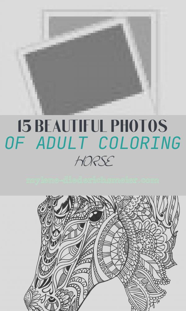 Adult Coloring Horse Fresh Horse Coloring Book for Adults An Adult Coloring Book Of