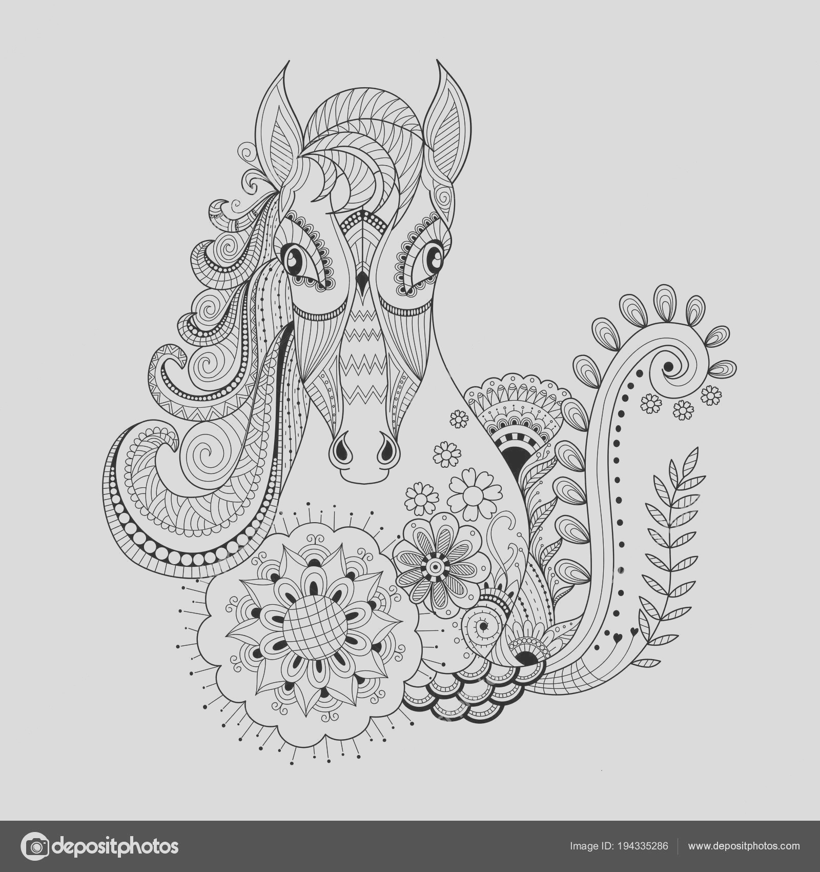 stock illustration horse floral zentangle adult coloring