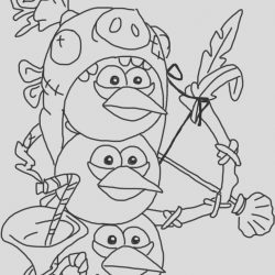 Angry Birds Epic Coloring Page Lovely Coloring Pages